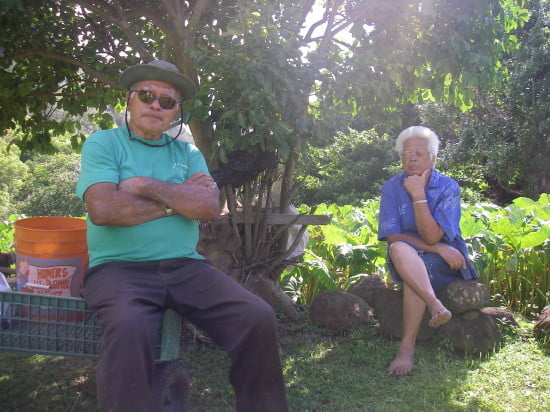 Tom and Annie Hashimoto, caretakers of the lo'i
