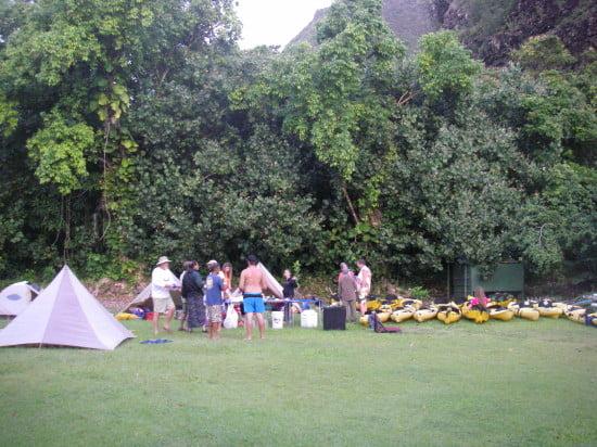 Camping at the lo'i