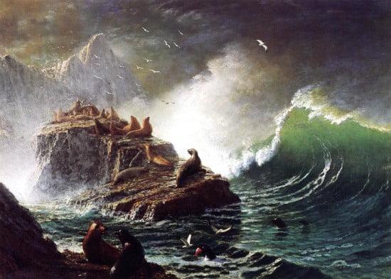 Seals on the Rocks - Farallon Islands by Albert Bierstadt