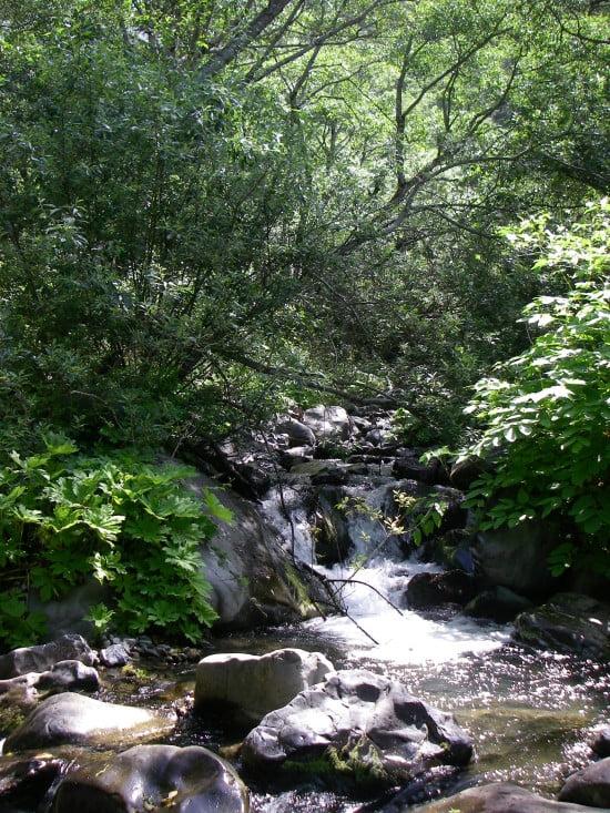 Buck Creek