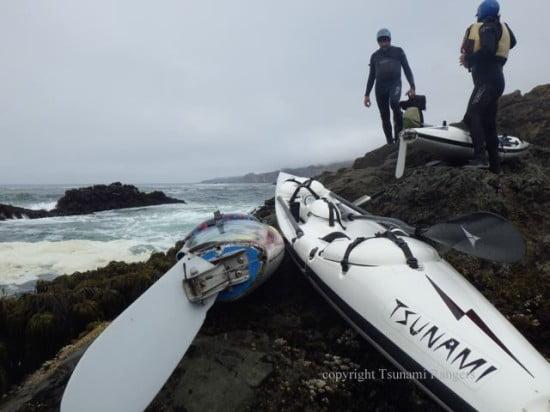 Seal landings