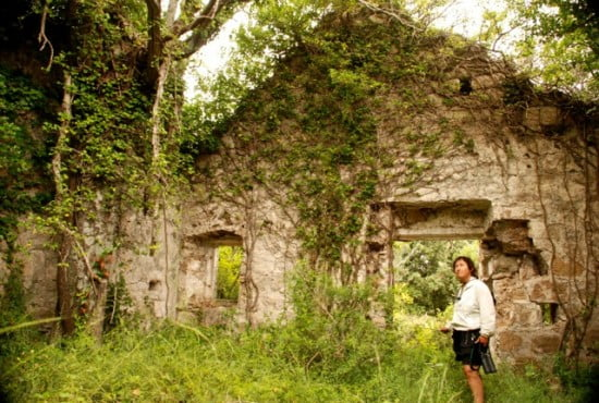 Exploring Sipan Is, Croatia where the forest is retaking an ancient building.