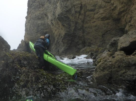 Seal landing - check!