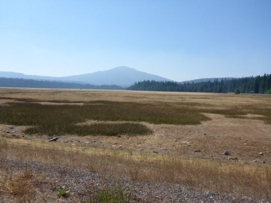 Great Meadow, a 500 acre prairie on the edge of Lake of the Woods