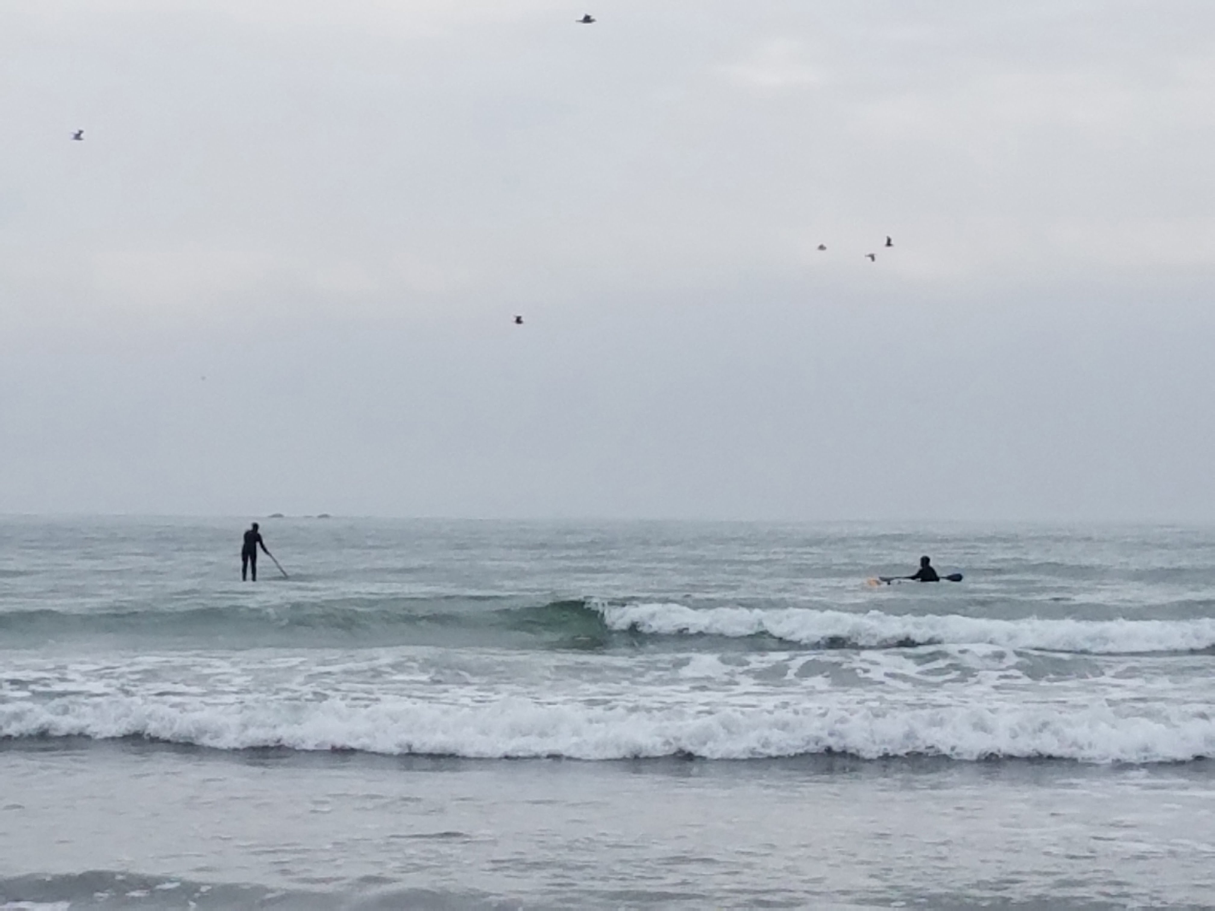 Share the waves!