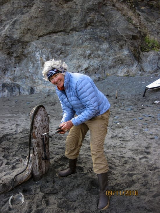 TR Paula Renouf sticks the 'hawks